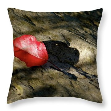 The Fallen Leaf Throw Pillow