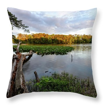 The Fallen Throw Pillow