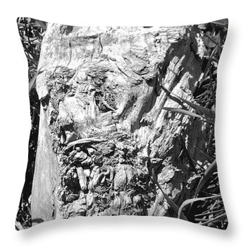 The Fallen - Unhidden Door Throw Pillow