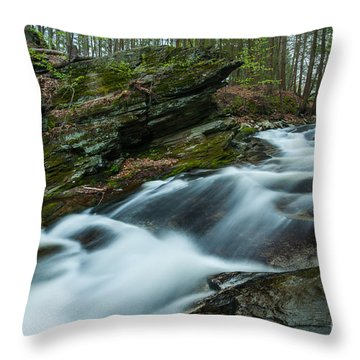 The Falls At Tierney Throw Pillow