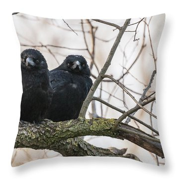 The Family Throw Pillow by Sergey Simanovsky