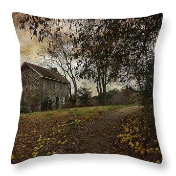 The Farm House  Throw Pillow