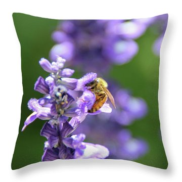 The Fauna And Flora Rendez-vous Throw Pillow by Yoel Koskas