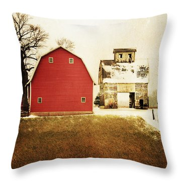 Throw Pillow featuring the photograph The Favorite by Julie Hamilton