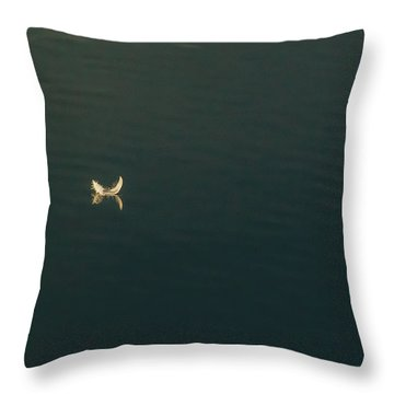 Throw Pillow featuring the photograph The Feather 2 by Timothy Latta