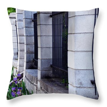 The Fence Throw Pillow by Kathleen Stephens