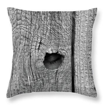 The Fence That Sleeps Throw Pillow by Douglas Barnett
