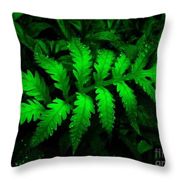 Throw Pillow featuring the photograph The Fern by Elfriede Fulda