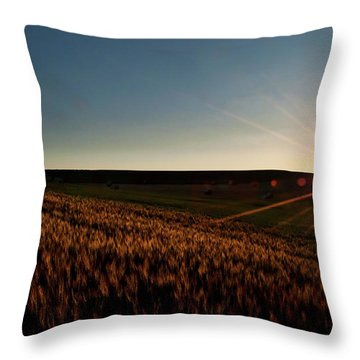 Throw Pillow featuring the photograph The Field Of Gold by Mark Dodd