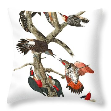 Throw Pillow featuring the photograph The Fight by Munir Alawi