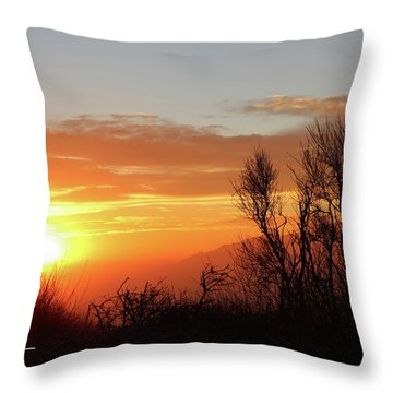 The Fire Of Sunset Throw Pillow