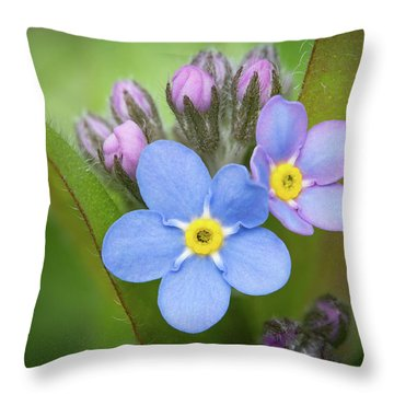 Throw Pillow featuring the photograph The First Blossom Of The Forget Me Not by William Lee