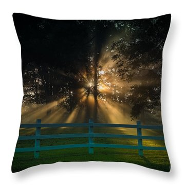 The First Day Of Creation Throw Pillow