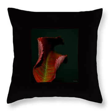 Throw Pillow featuring the photograph The First Day Of Fall by Marija Djedovic