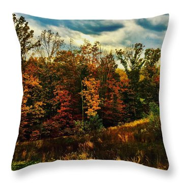 The First Days Of Fall Throw Pillow