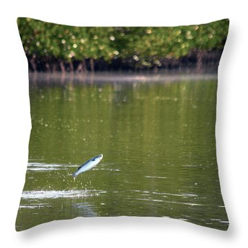 The Fish Are Jumping Throw Pillow