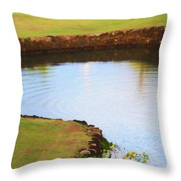 The Fish Pond Throw Pillow by Bonnie Follett