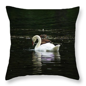 The Fishers Throw Pillow