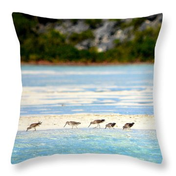 The Five Sandpipers Throw Pillow
