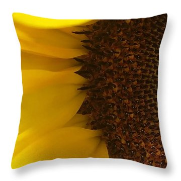 The Flame Throw Pillow