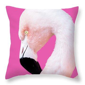 Throw Pillow featuring the photograph The Flamingo, Animal Decor, Nursery Decor, Flamingo Gifts, Flamingo Phone Case,  by David Millenheft