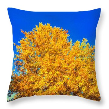 The Flare Of Fall On A Clear Day Throw Pillow