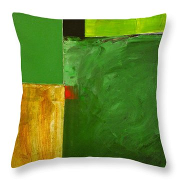 The Flat Lands Throw Pillow