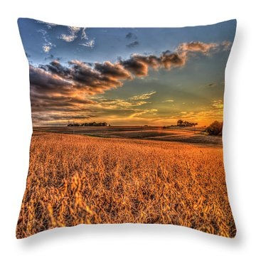 The Fleeting Sunset Missouri Soybean Farming Art  Throw Pillow