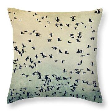 The Flight Throw Pillow