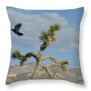 Throw Pillow featuring the photograph The Flight Of Raven. Lucerne Valley. by Ausra Huntington nee Paulauskaite