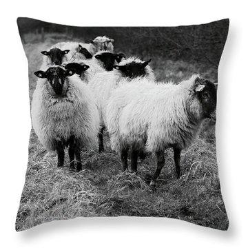 The Flock 1 Throw Pillow