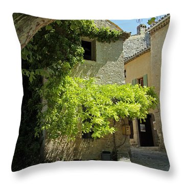 The Flower Box Throw Pillow by John Stuart Webbstock