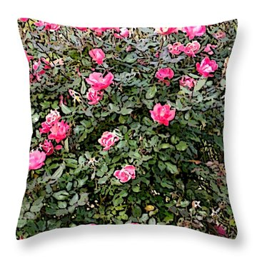 Throw Pillow featuring the photograph Rose Bush by Skyler Tipton