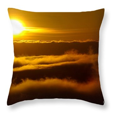 The Fluff Throw Pillow by Paul Foutz