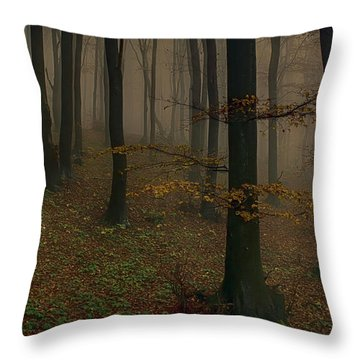 The Fog Throw Pillow