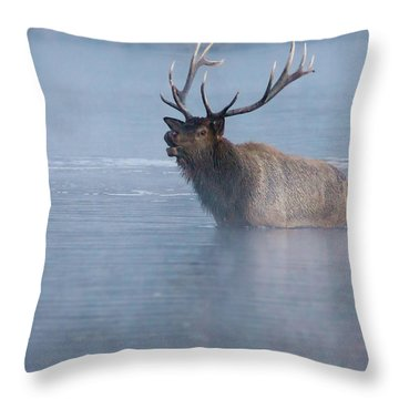 The Foggy Bugle Throw Pillow