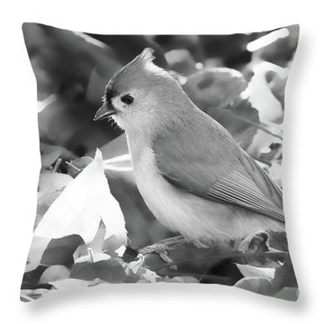 The Forager Throw Pillow