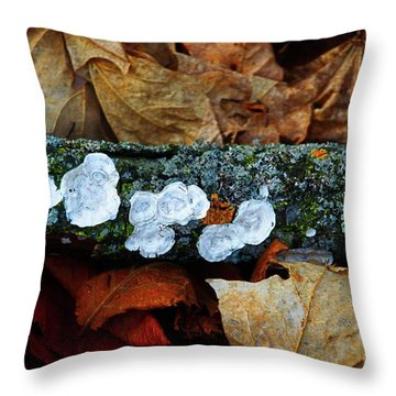 Throw Pillow featuring the photograph The Forest Floor - Cascade Wi by Mary Machare