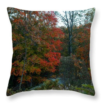 The Forest Throw Pillow by Joseph G Holland