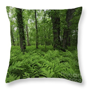 The Forest Of Ferns Throw Pillow