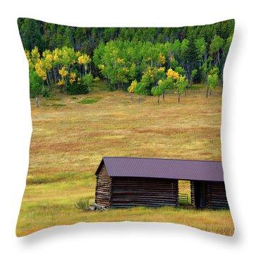 The Forgotten Barn Throw Pillow