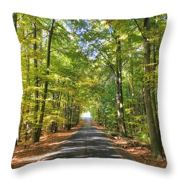 Road In The Forrest In Austria Throw Pillow