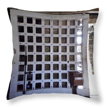 The Fort Door Throw Pillow