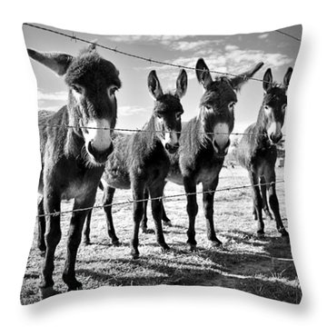 Throw Pillow featuring the photograph The Four Amigos by Sharon Jones