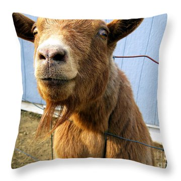 The Friendly Goat  Throw Pillow by Sandra Church