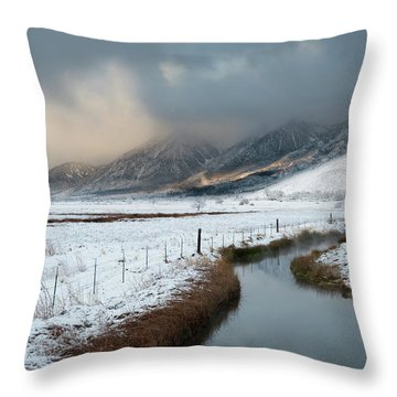 The Front Throw Pillow by Scott Warner