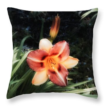 The Garden At St. Stephen's- May 2016 Throw Pillow