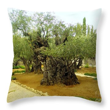 The Garden Of Gethsemane Throw Pillow