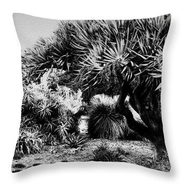 The Gardens Throw Pillow by Douglas Barnard