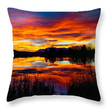 The Gates Of Heaven No. 2 Throw Pillow